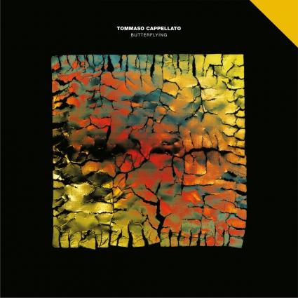 album-butterflying